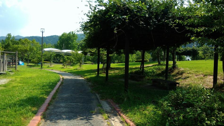 福岡 大野城 憩いの森公園 自然