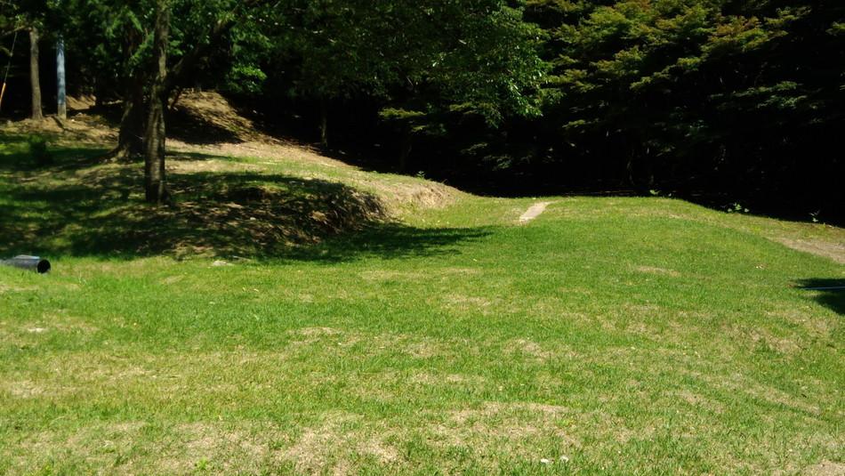 キャンプ 福岡 昭和の森広いサイト