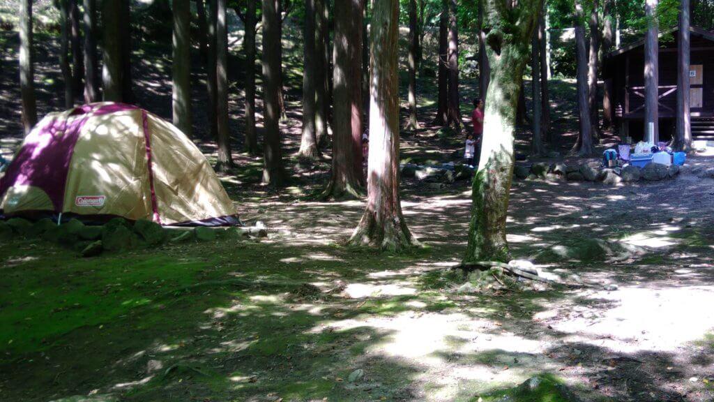 一本松キャンプ場 猿岩 おすすめ 小川 山