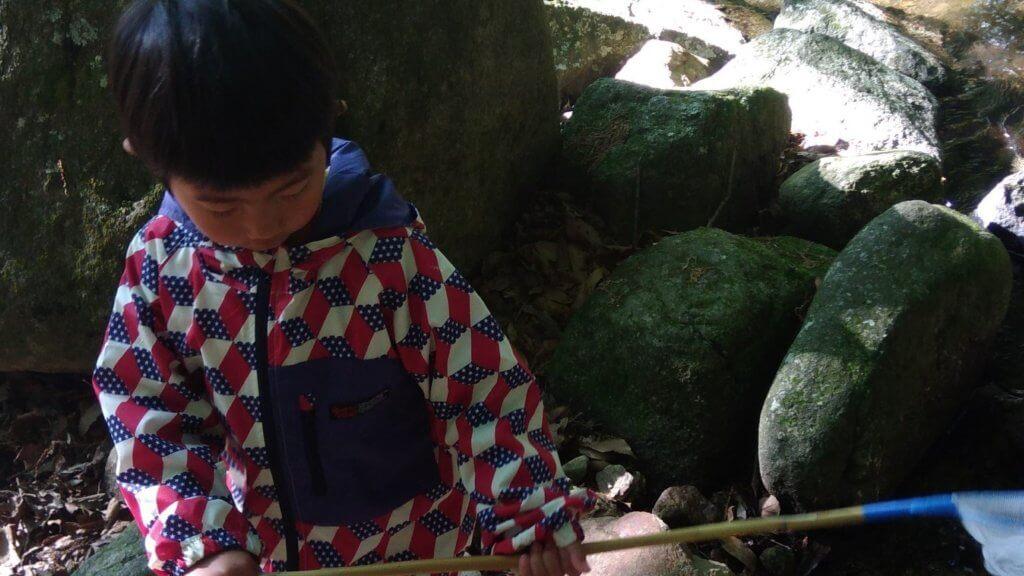 昭和の森キャンプ場 一本松 おすすめ ロッジ