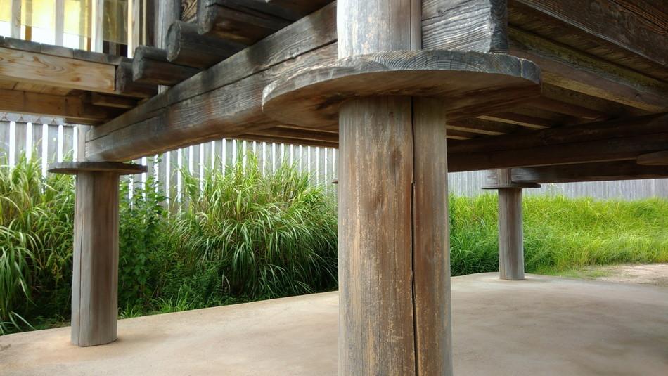 ネズミ返し 佐賀 吉野ケ里遺跡公園に家族でお出かけ ブログ