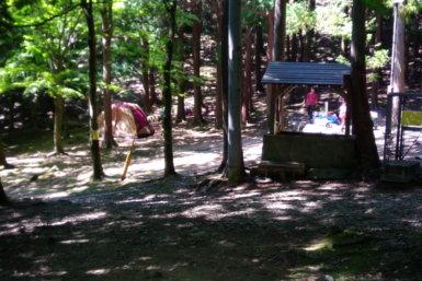 福岡 キャンプ 一本松キャンプ場 昭和の森 キャンプブログ