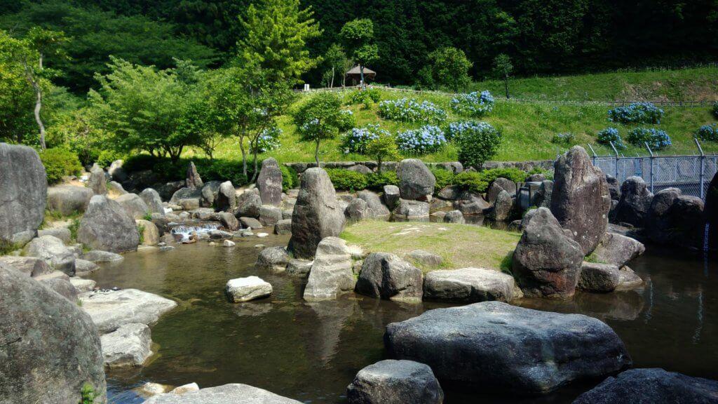 福岡 家族キャンプ 初心者 一本松キャンプ場 水遊び ブログ