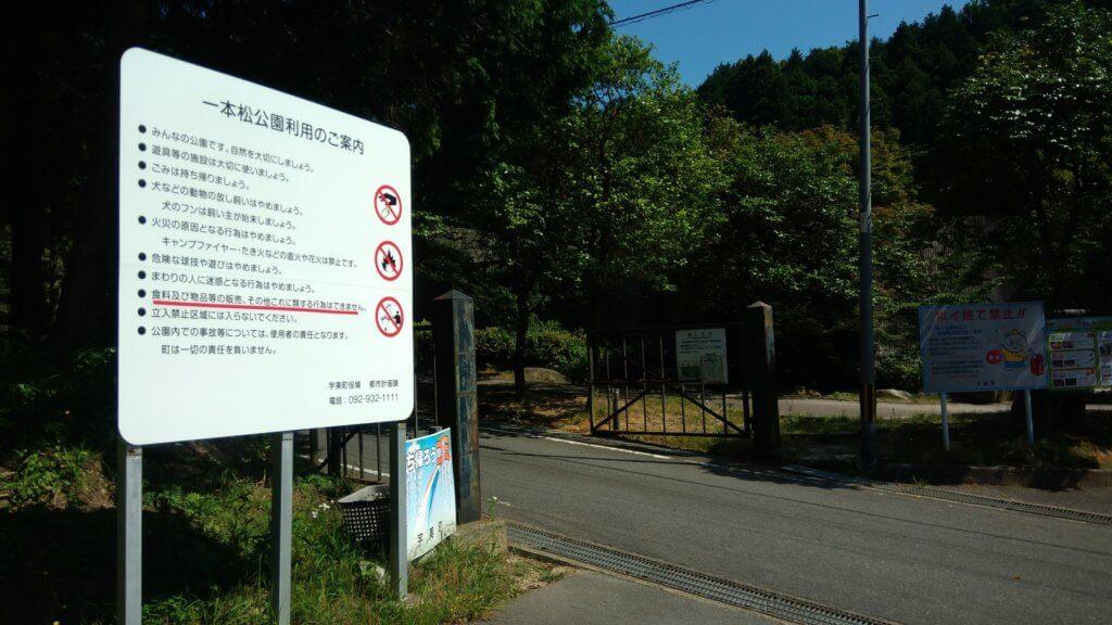 福岡県 宇美町 昭和の森 一本松 キャンプ場