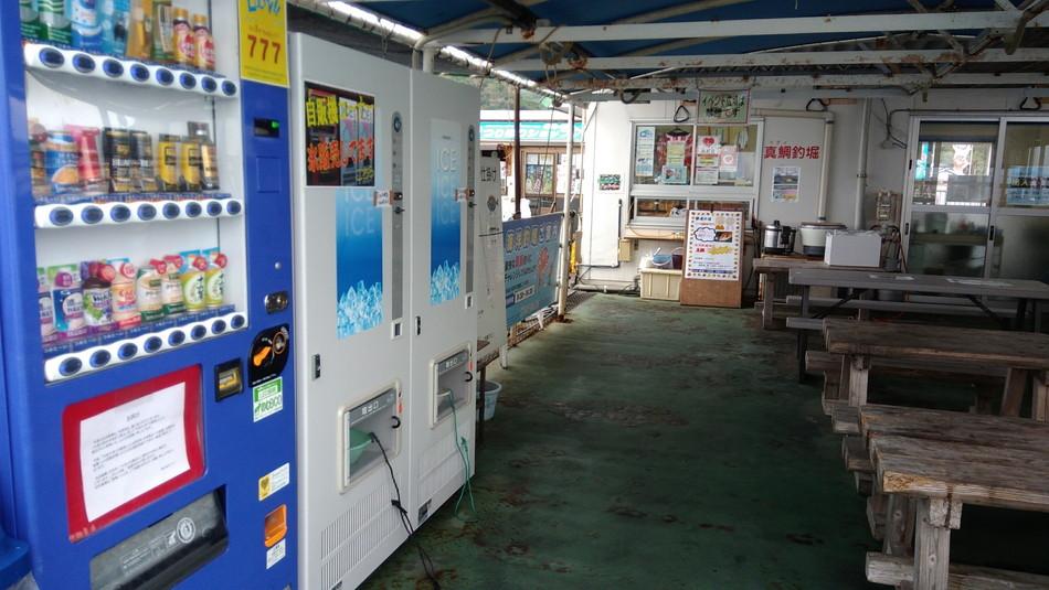 福岡市海釣り公園 自動販売機 タイ
