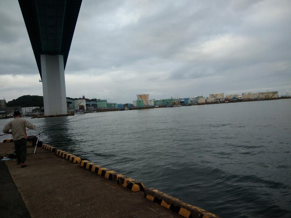 福岡 釣り 博多湾 シーバス 那の津