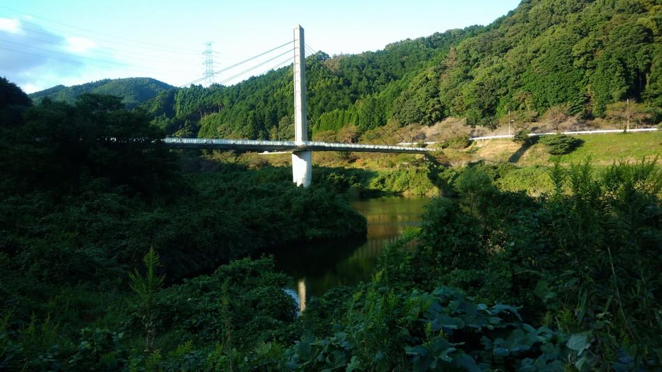河内ダム 橋 釣り