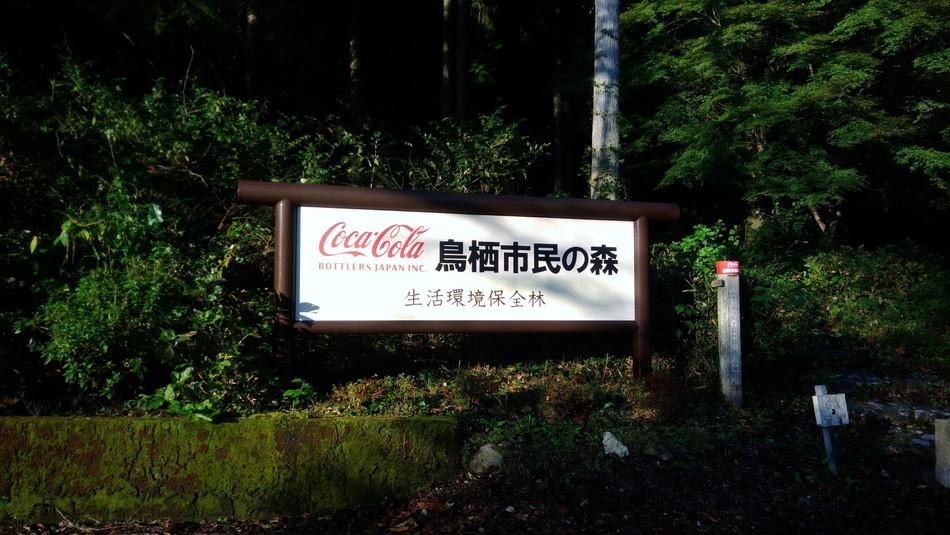 鳥栖市民の森 キャンプ おすすめ キャンプブログ 福岡 九州