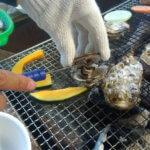 福岡 牡蠣小屋 糸島