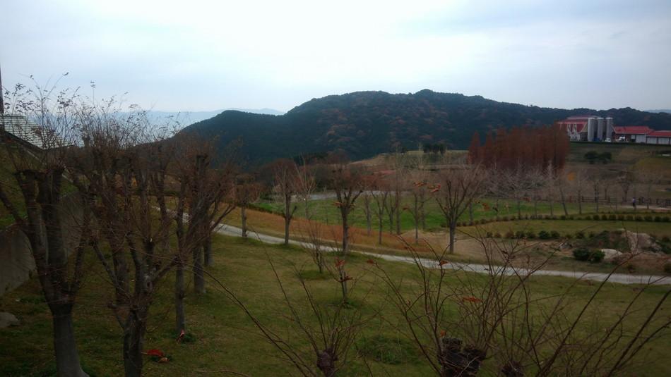 福岡市 モーモーランド 油山 キャンプブログ