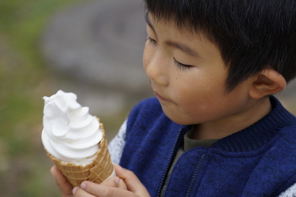 もーもーらんど ソフトクリーム おすすめ ブログ