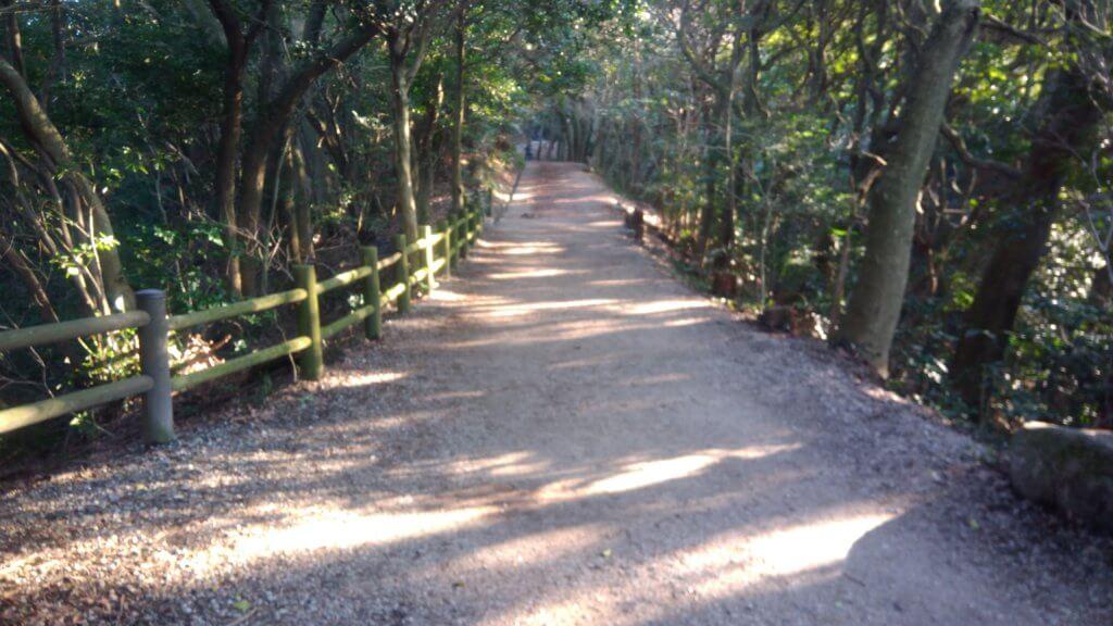 天拝山の参道 子供 安心 福岡登山ブログ