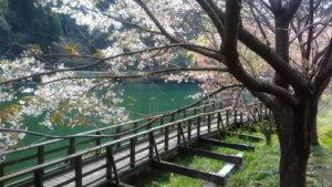 グリーンパル日向神峡 キャンプブログ 福岡