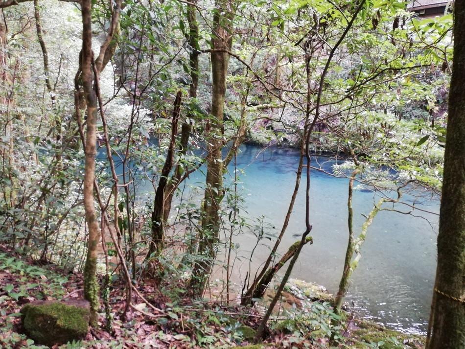 熊本の観光おすすめは菊池渓谷2