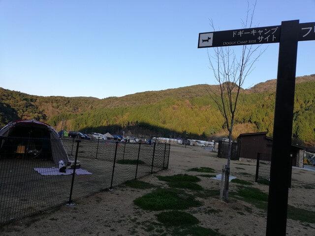 福岡おすすめキャンプ場の犬サイト