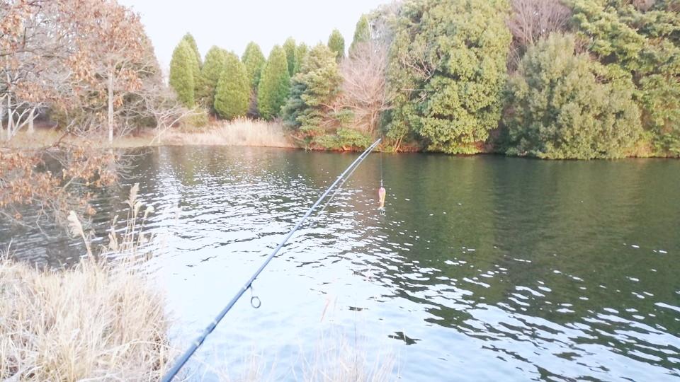 ブラックバス釣り 日指ダム湖
